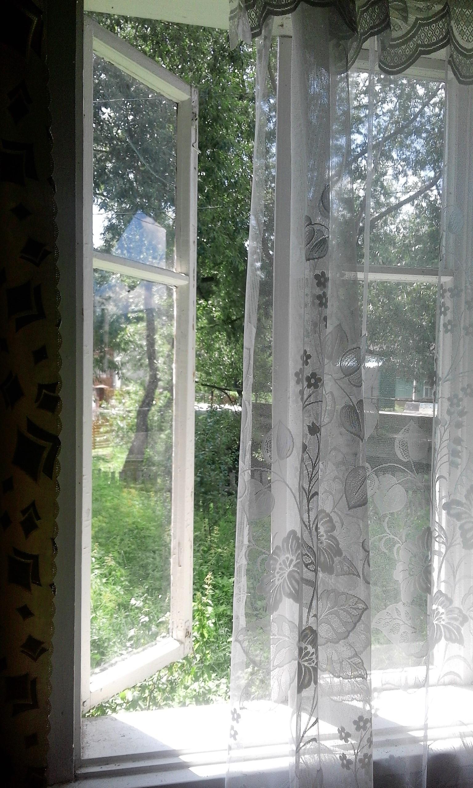 один день луганчанки в карпатской деревне, фото 11