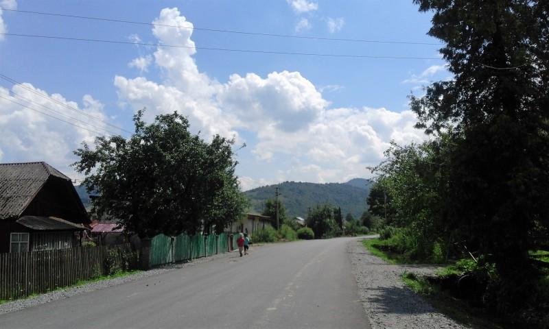 один день луганчанки в карпатской деревне, фото 18