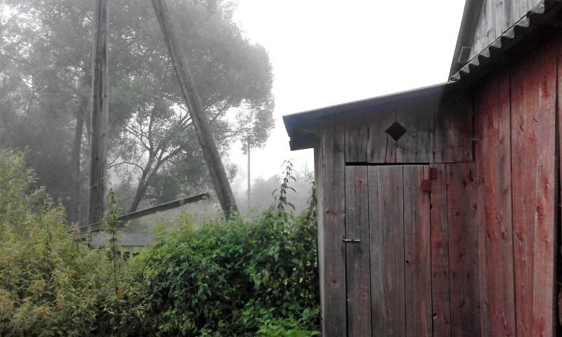 один день луганчанки в карпатской деревне, фото 3