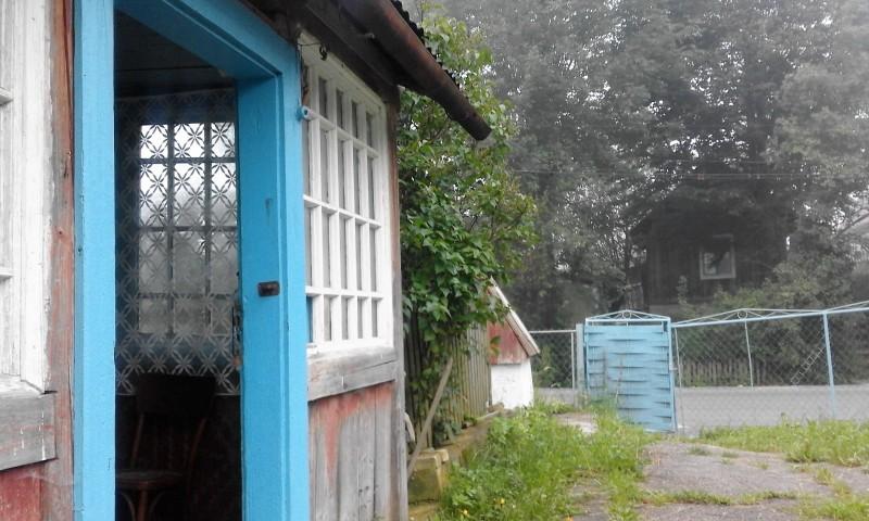 один день луганчанки в карпатской деревне, фото 4