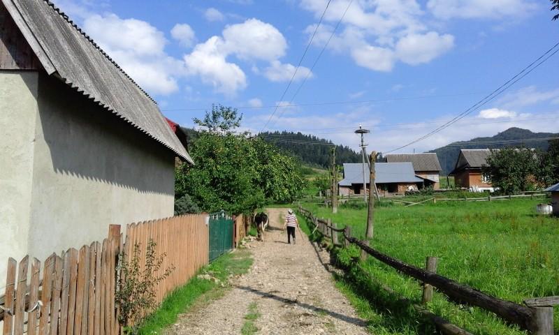 один день луганчанки в карпатской деревне, фото 47