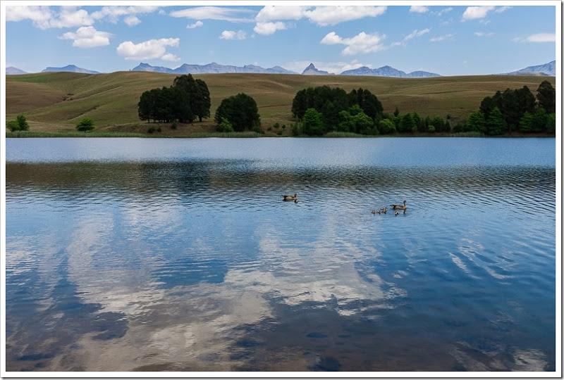 один мой день в Драконовых горах, ЮАР, фото 19