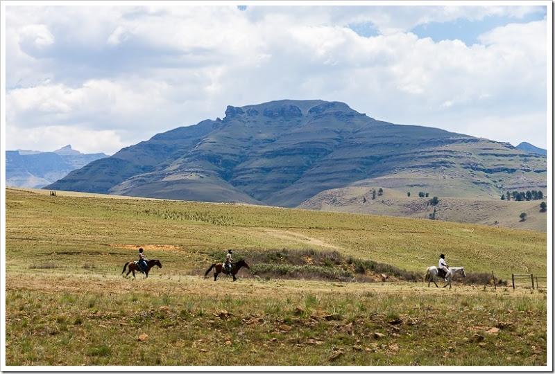 один мой день в Драконовых горах, ЮАР, фото 24
