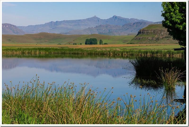 один мой день в Драконовых горах, ЮАР, фото 4