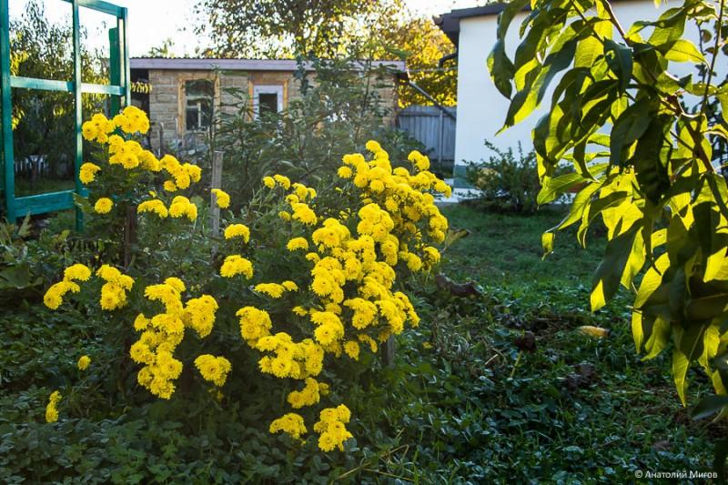 один октябрьский день простого крымского пенсионера, фото 11
