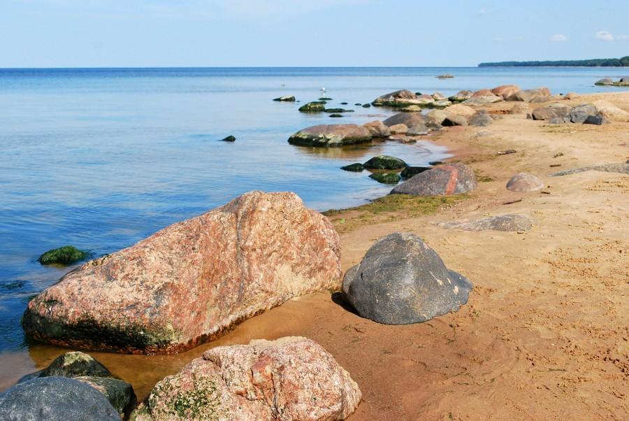 один мой летний день на взморье, посёлок Туя, Латвия, фото 20