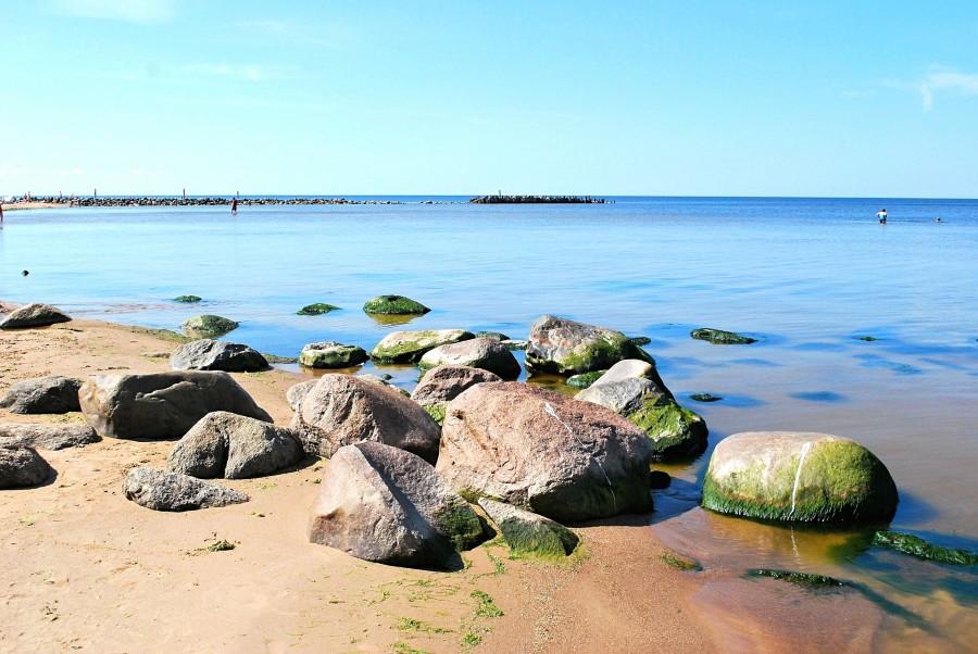 один мой летний день на взморье, посёлок Туя, Латвия, фото 22