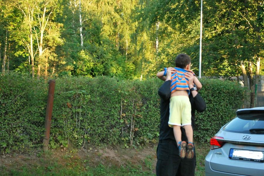 один мой летний день на взморье, посёлок Туя, Латвия, фото 39