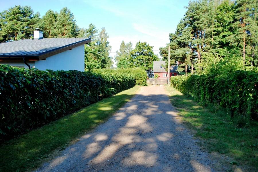 один мой летний день на взморье, посёлок Туя, Латвия, фото 9