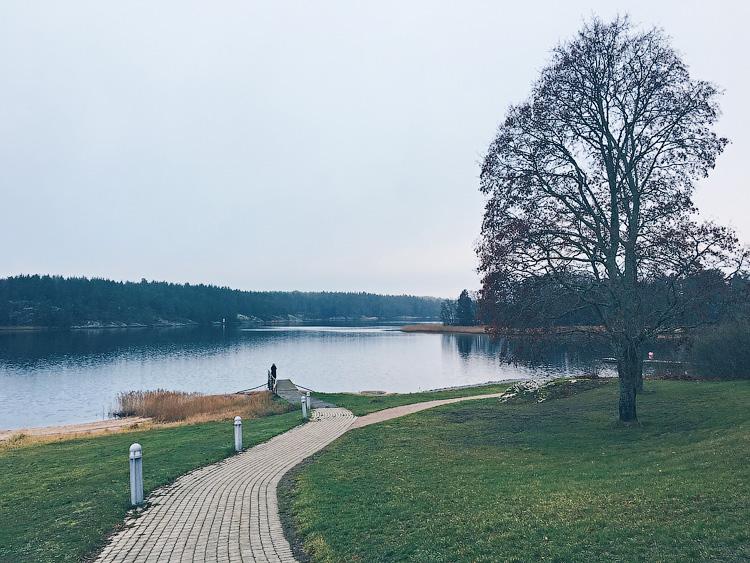 один мой ноябрьский день в Стокгольме, Швеция, фото 12