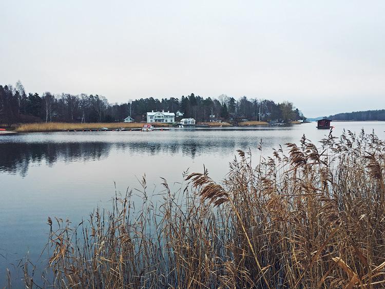 один мой ноябрьский день в Стокгольме, Швеция, фото 13