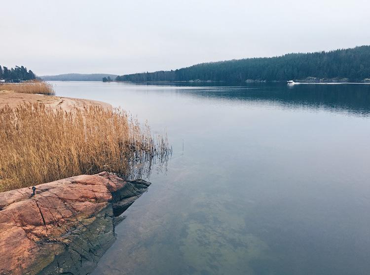 один мой ноябрьский день в Стокгольме, Швеция, фото 15
