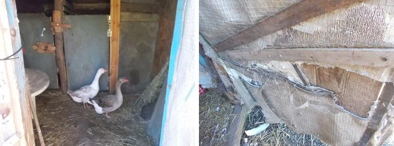 один будний день селянки Виктории из Липецкой области, фото 11