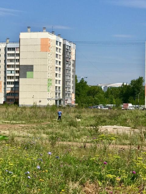 один день домохозяйки в Челябинске, фото 47