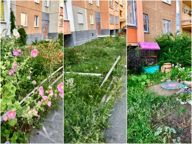 один день домохозяйки в Челябинске, фото 73