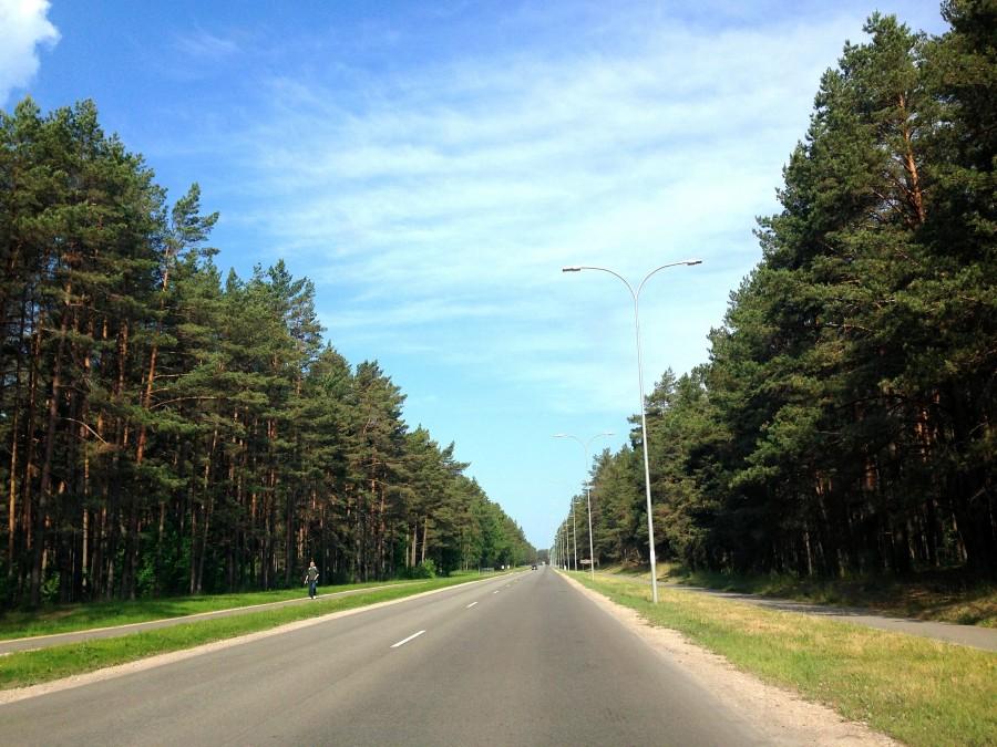 один день домохозяйки в городе Рига, Латвия, фото 12
