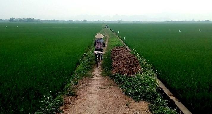 один день преподавателя английского языка во Вьетнаме, фото 30