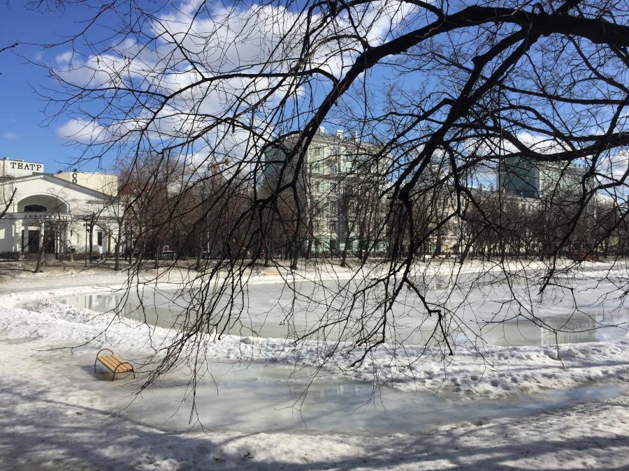 один мой послепраздничный день в городе Москва, фото 15
