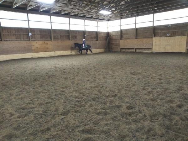 один мой рабочий день и подготовка к выездным соревнованиям по конному спорту, фото 28