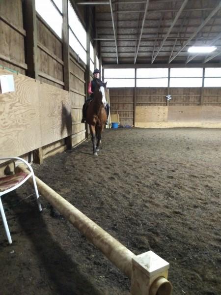 один мой рабочий день и подготовка к выездным соревнованиям по конному спорту, фото 29