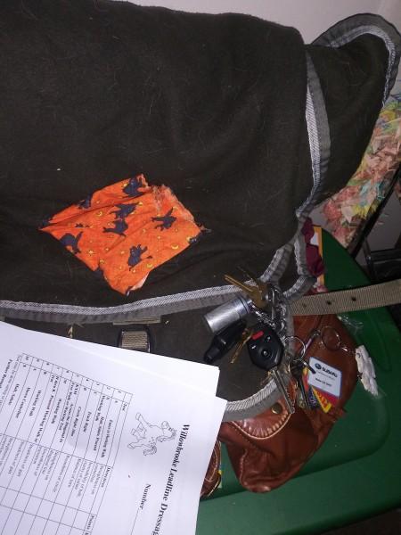 один мой рабочий день и подготовка к выездным соревнованиям по конному спорту, фото 9