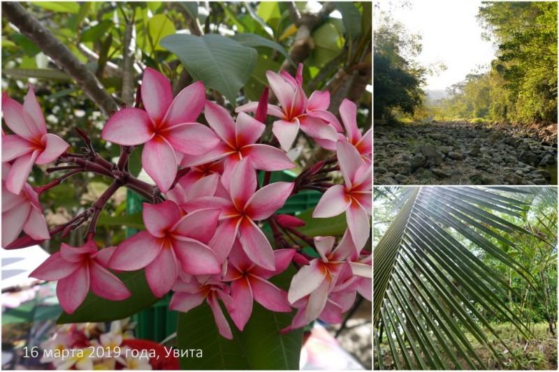 один мой день в стране, в которой вечное лето, Коста-Рика