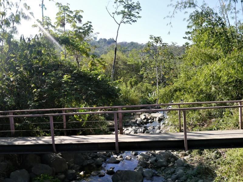 один мой день в стране, в которой вечное лето, Коста-Рика, фото 23