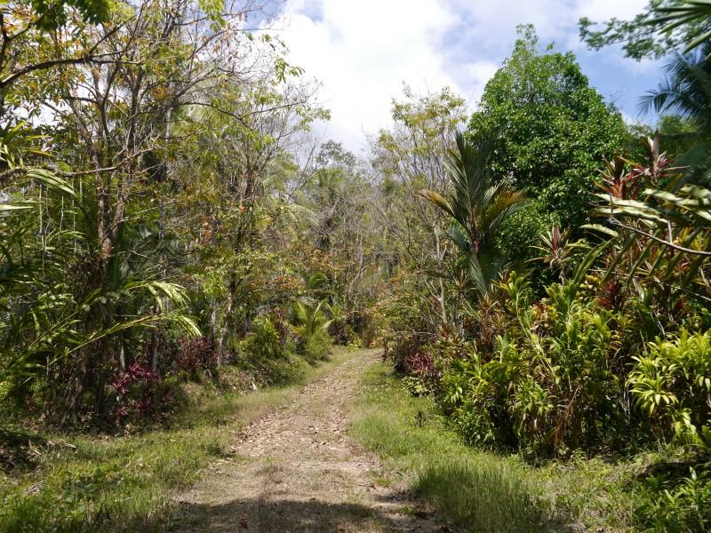 один мой день в стране, в которой вечное лето, Коста-Рика, фото 46