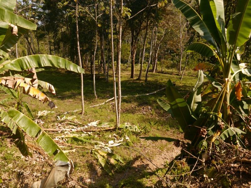 один мой день в стране, в которой вечное лето, Коста-Рика, фото 51