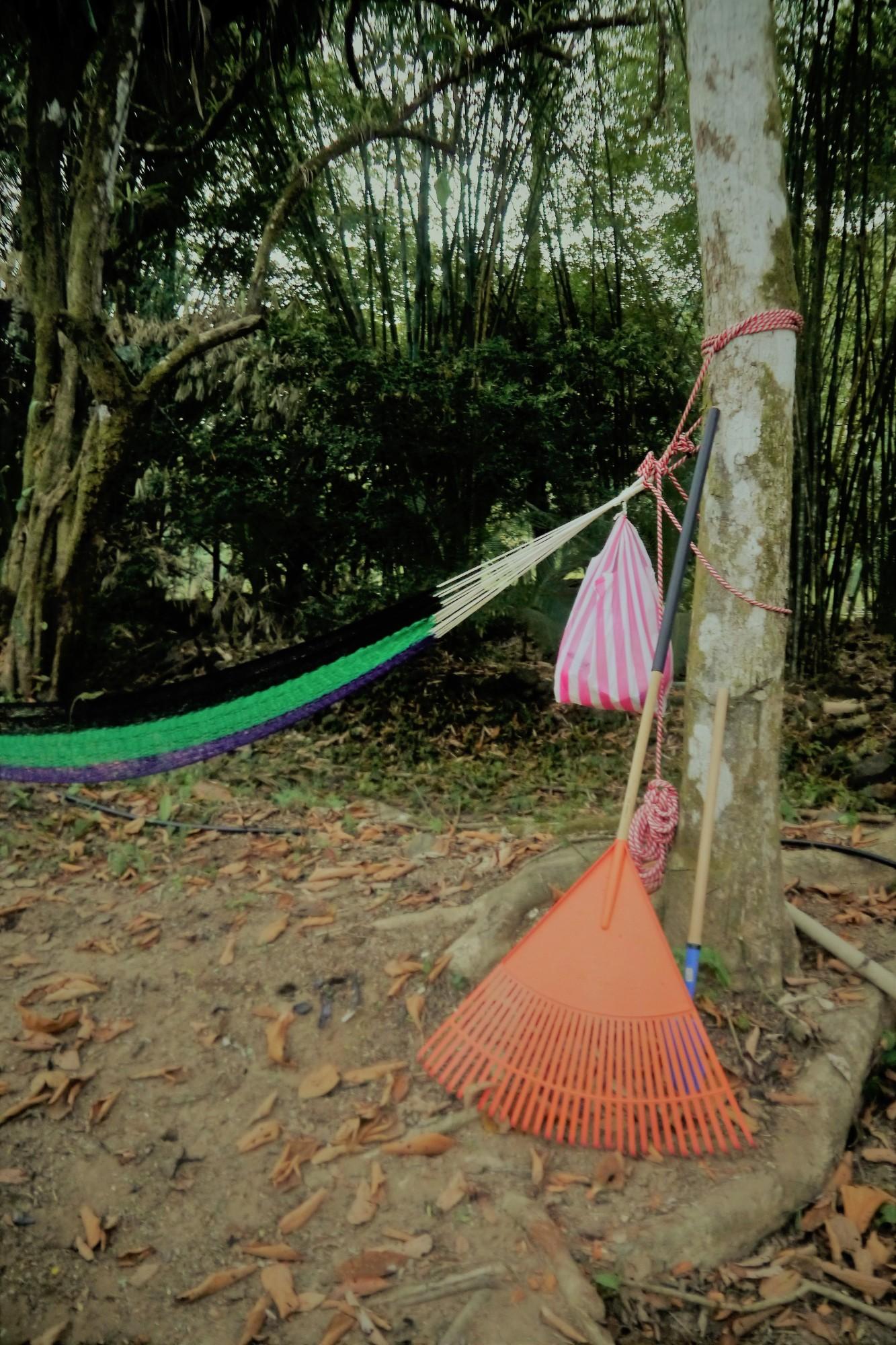 один мой день в стране, в которой вечное лето, Коста-Рика, фото 7