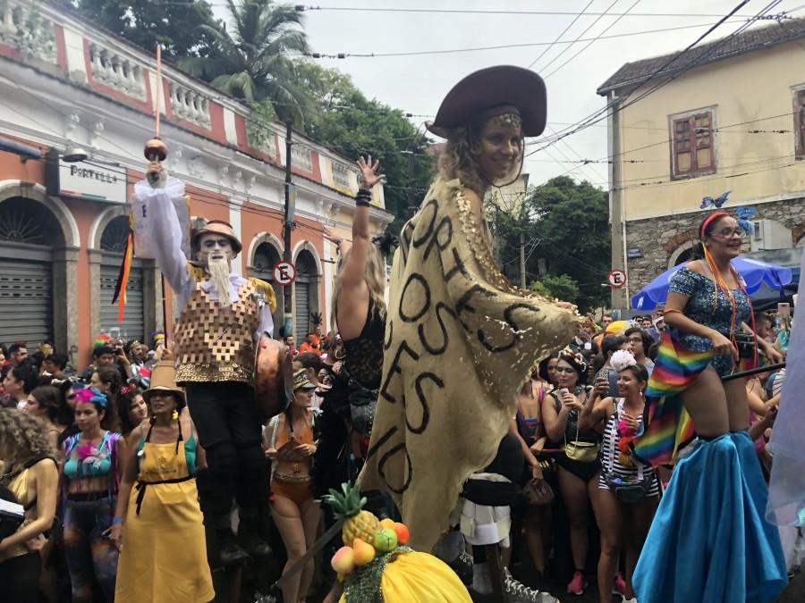 один мой день на карнавале в Рио-де-Жанейро, фото 14