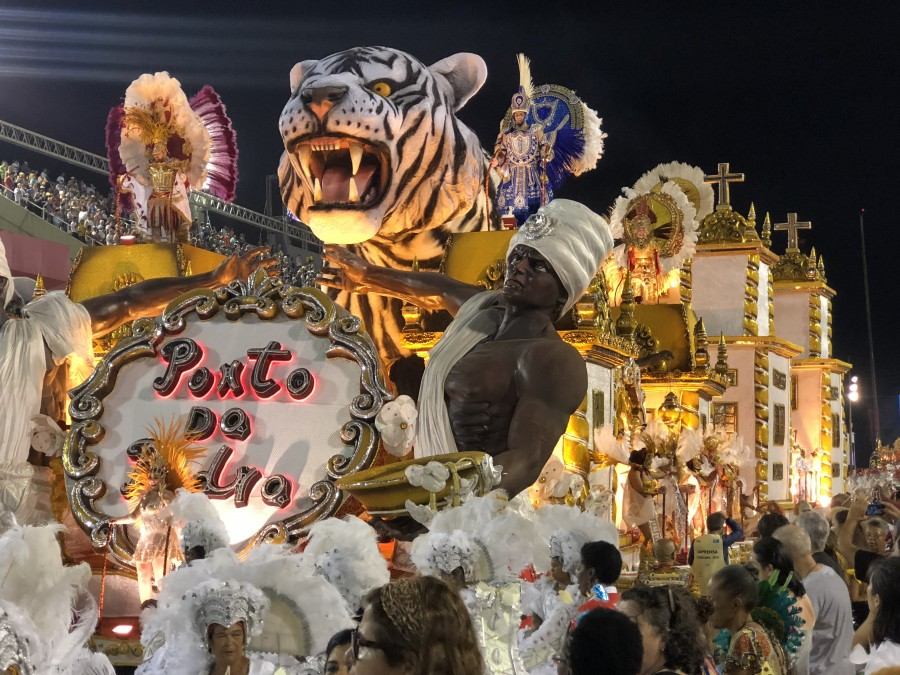 один мой день на карнавале в Рио-де-Жанейро, фото 87