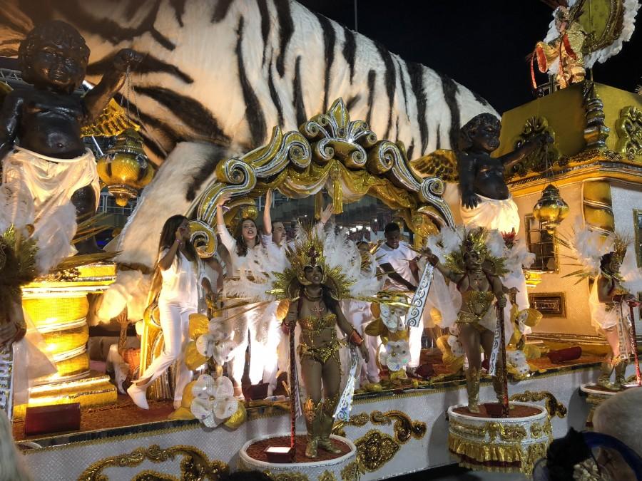 один мой день на карнавале в Рио-де-Жанейро, фото 88
