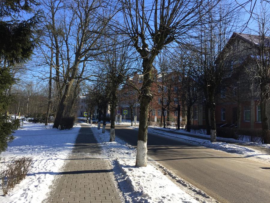 один мой день за сутки до весны в Зеленоградске, фото 20