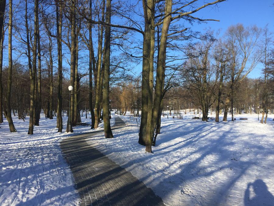 один мой день за сутки до весны в Зеленоградске, фото 7