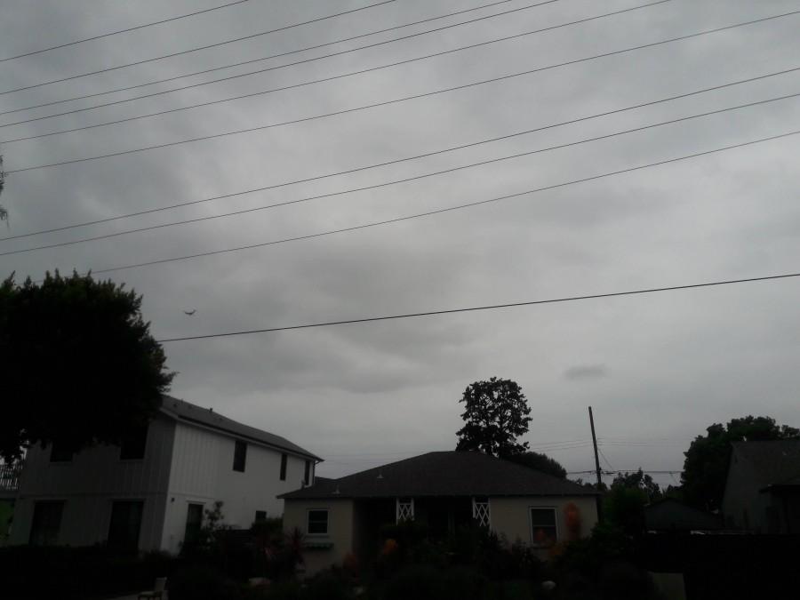один мой дождливый день в Даунтауне Лос-Анджелеса, фото 12
