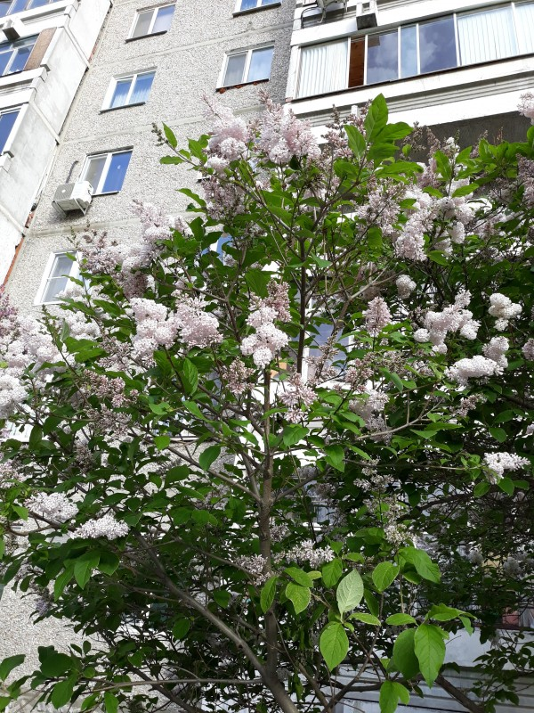 одна моя пятница в городе Екатеринбург, фото 13
