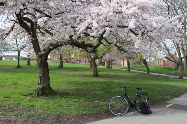 один мой день на открытие велосезона 2019 года, Англия, Лидс