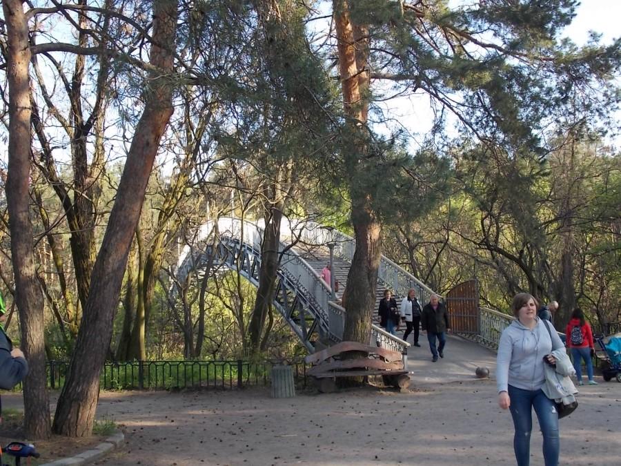 один день фрилансера, проведенный в пути из Киева в Черкассы, фото 60