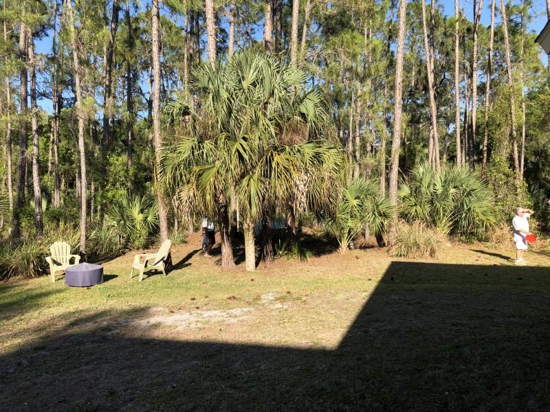 один мой выходной, проведенный за домашними хлопотами, Флорида, США, фото 47