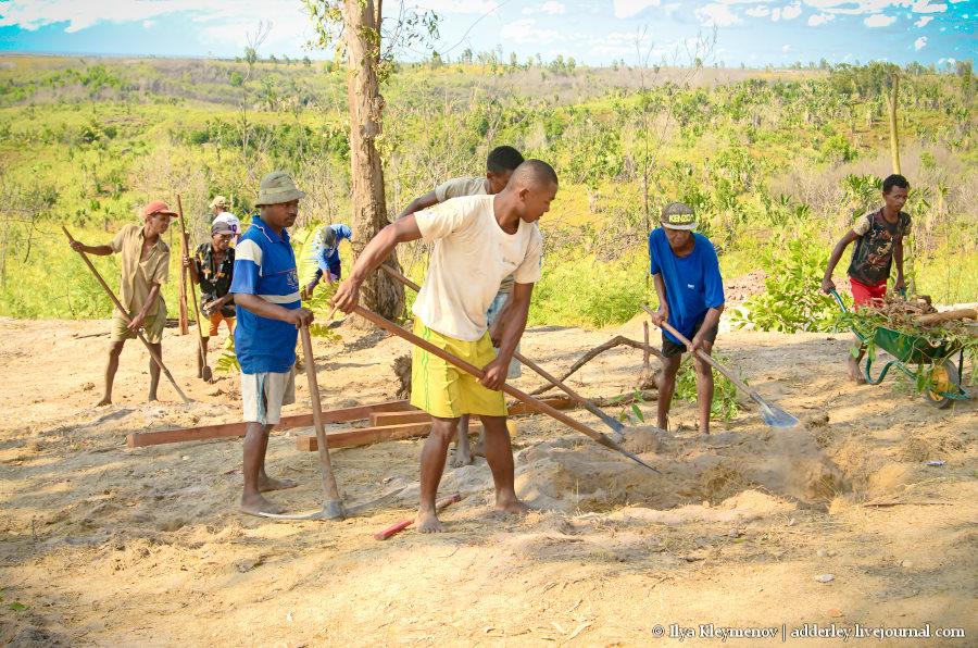 один рядовой день плантатора на Мадагаскаре, фото 10