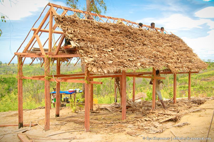 один рядовой день плантатора на Мадагаскаре, фото 18