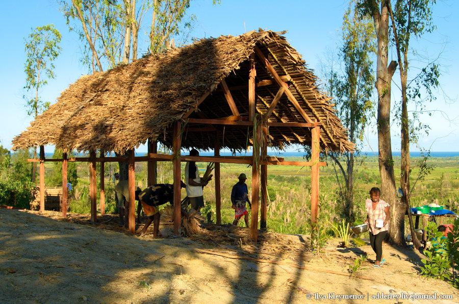 один рядовой день плантатора на Мадагаскаре, фото 19