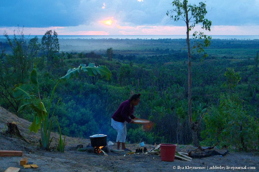 один рядовой день плантатора на Мадагаскаре, фото 2