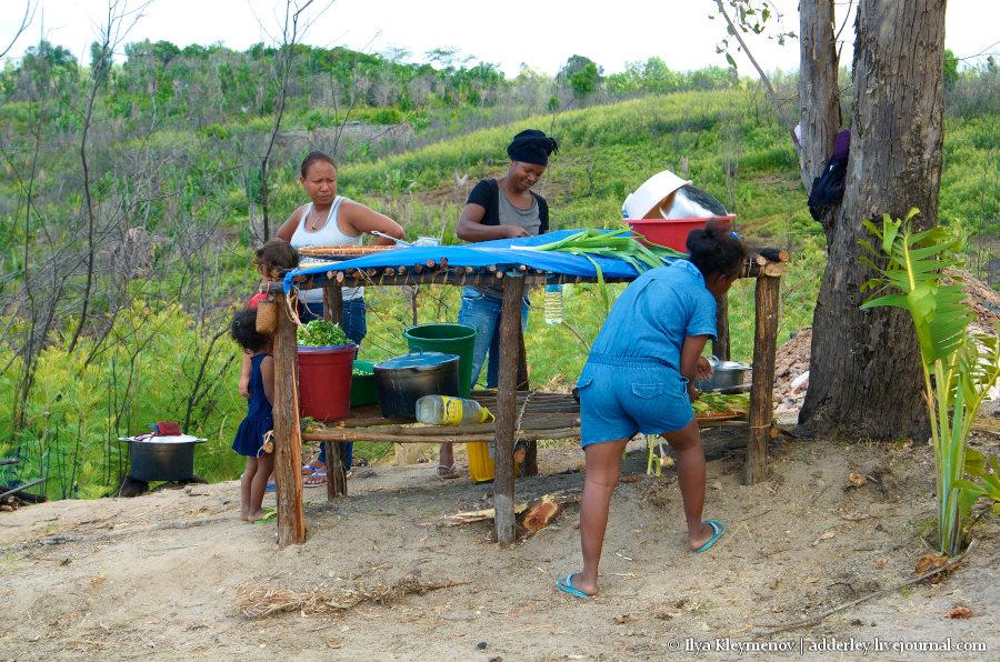 один рядовой день плантатора на Мадагаскаре, фото 20