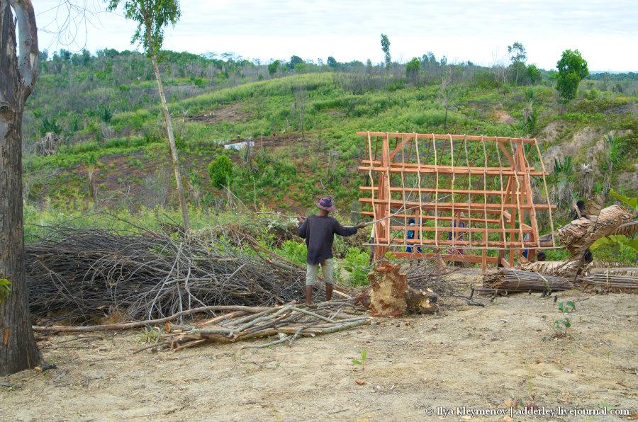 один рядовой день плантатора на Мадагаскаре, фото 25