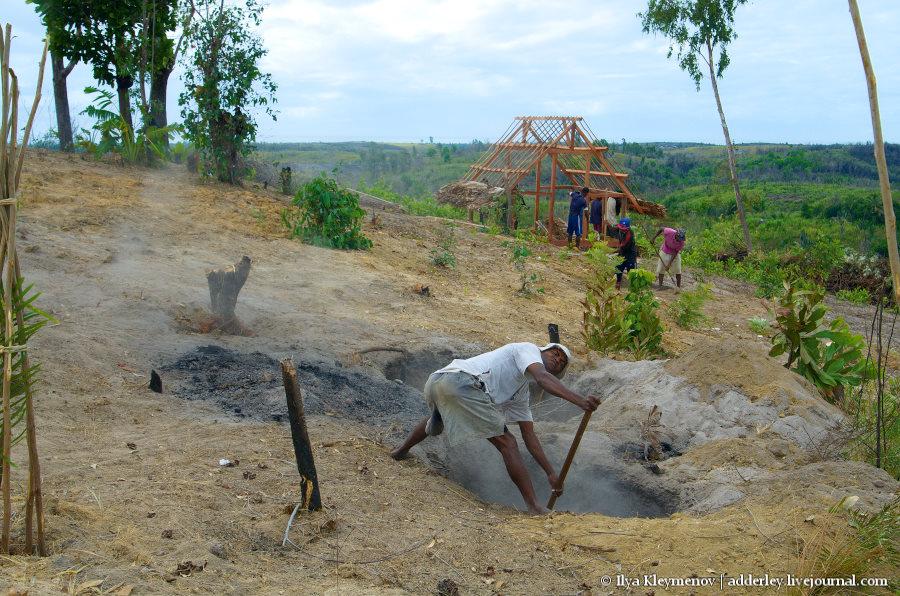 один рядовой день плантатора на Мадагаскаре, фото 26