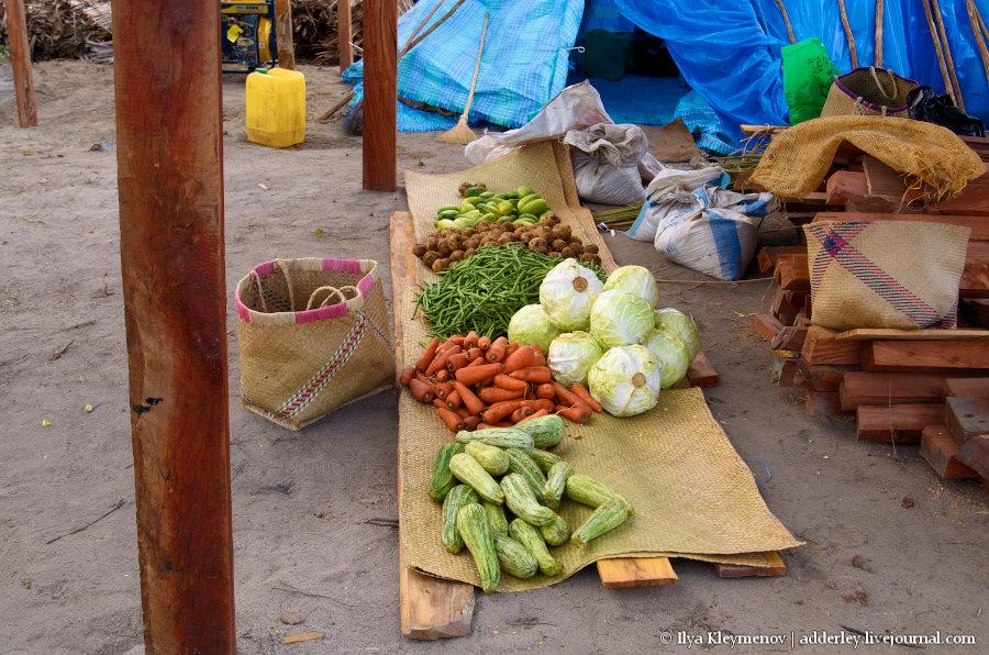 один рядовой день плантатора на Мадагаскаре, фото 27