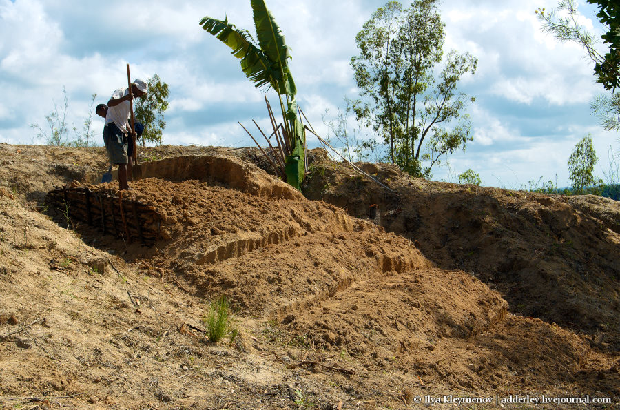 один рядовой день плантатора на Мадагаскаре, фото 7