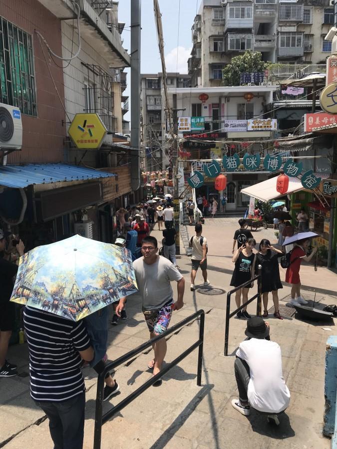 один день преподавателя в субтропическом Сямэнь, Китай, фото 23